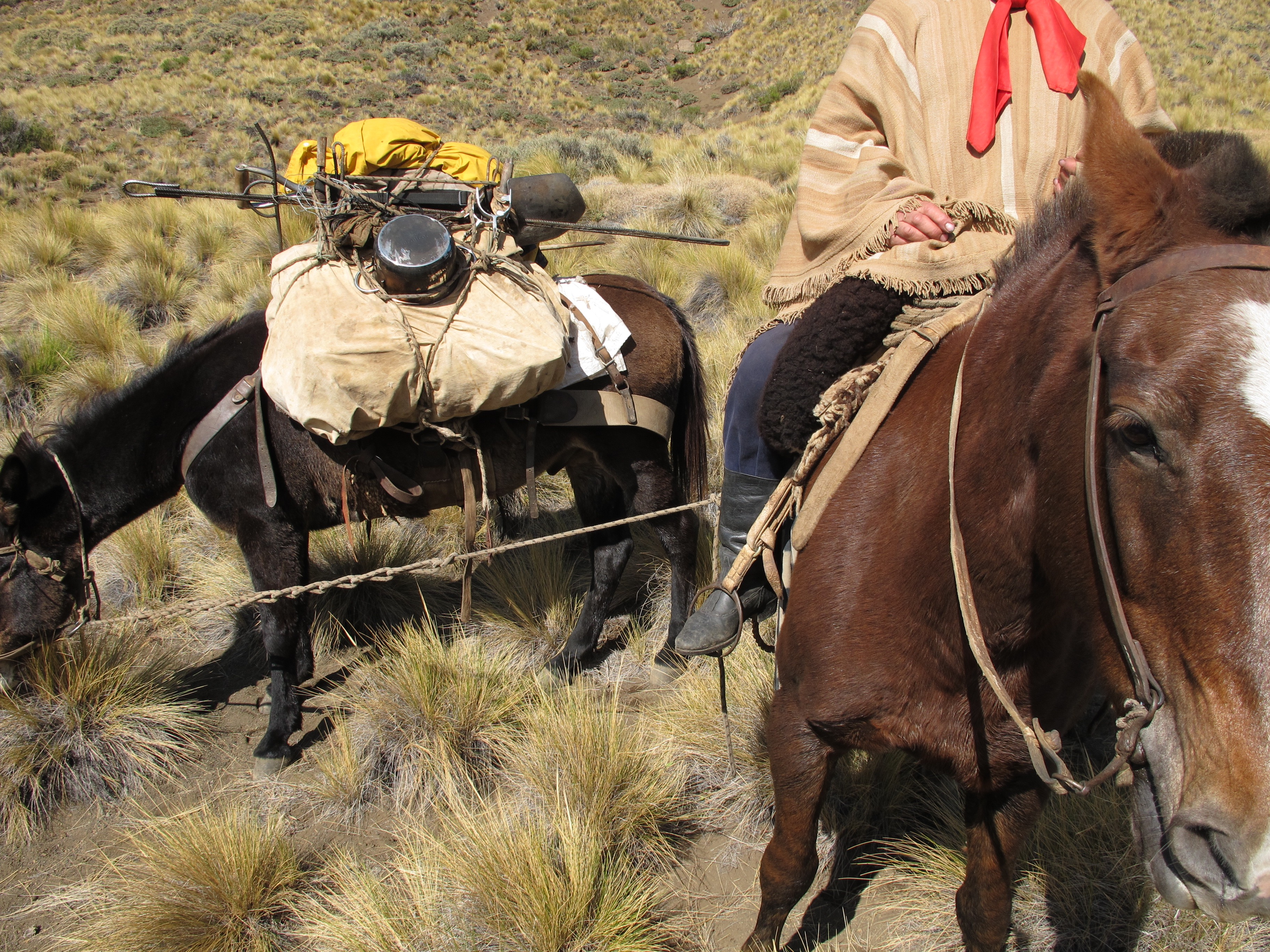 Packing List For Horse Pack Trips Estancia Ranquilco