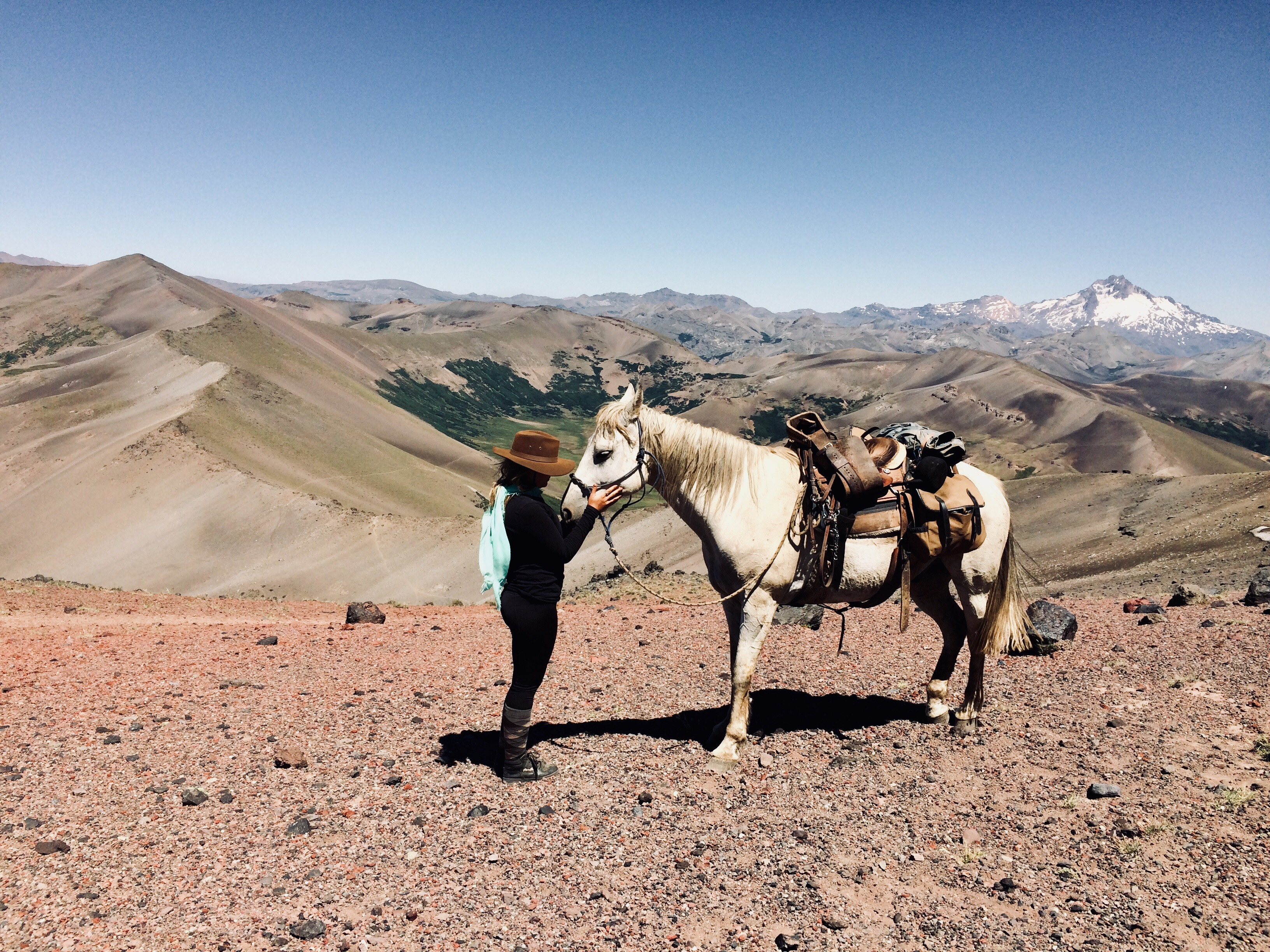 Woman and criollo horse on mountain summit in the Andes