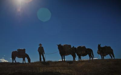 Silhouette of woman standing with pack mules on horse pack trip at Estancia Ranquilco in Patagonia Argentina
