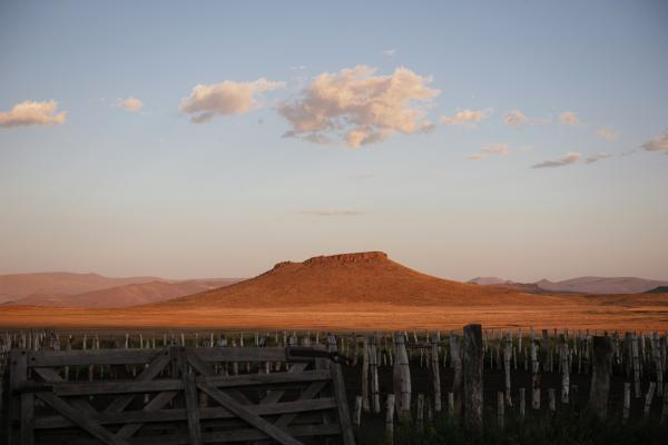 Sunset photo on a ranch in Argentina