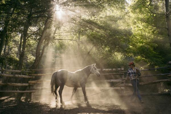 Woman training young horse using groundwork at Estancia Ranquilco in Patagonia Argentina