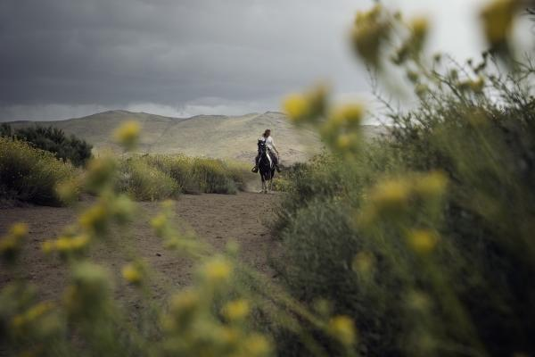Woman riding horse in Argentina landscape action photography