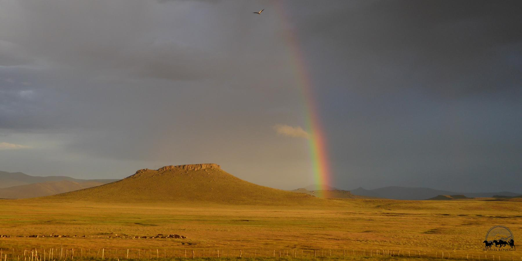 Rainbow in Patagonia