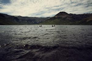 Horses swimming in an alpine lake in Patagonia Argentina on Estancia Ranquilco horsepack trip