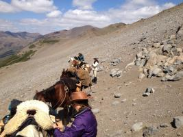 Women riders high in the Andes on a pack trip