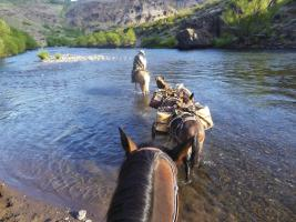 Horse pack trip in the Andes in Argentina river crossing