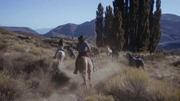 Riders rounding up the herd of horses at Estancia Ranquilco
