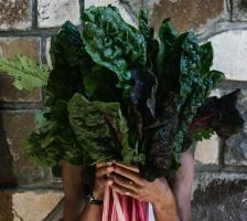 farm to table chard on our Estancia