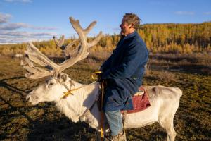 Man sitting on a reindeer at sunset in northern Mongolia