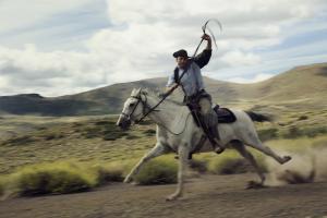 horse racing Patagonia