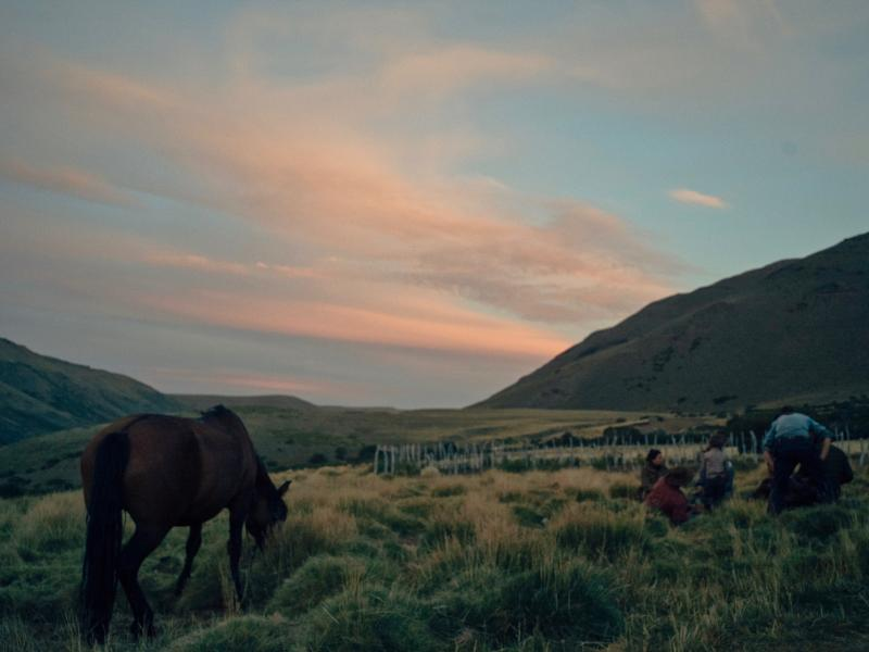 Woman playing ukele in the meadow while horses graze nearby on one of Estancia Ranquilco's horse pack trips in the Andes