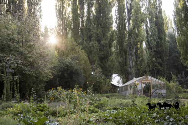 The organic garden at Estancia Ranquilco provides fresh produce to the off-grid lodge