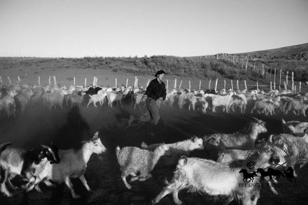Black and white photography gaucho in Argentina