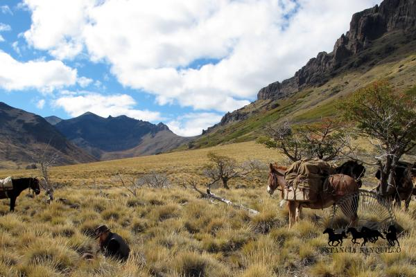 Pack trip in the Andes
